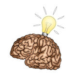 Creative Brain with light bulb - Illustration Royalty Free Stock Images