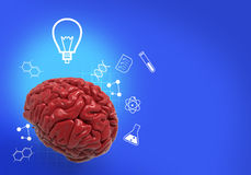 Creative brain and smart idea with clipping path. 3d render of colorful plastic toy brain and creative icon represent Royalty Free Stock Photo