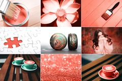 Creative collage in Living Coral color. Main trend concept. Natural and authentic mood stock image