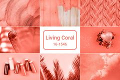 Creative collage in Living Coral color stock photos