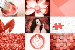 Creative collage in Living Coral color. Main trend concept. Natural and authentic mood royalty free stock photo