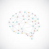 Creative color concept of the human brain Royalty Free Stock Image
