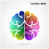 Creative colorful  brain Idea concept background. Creative colorful left brain and right brain Idea concept background .vector illustration contains gradient Royalty Free Stock Photography