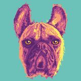 Creative Colorful Dog Vector Portrait stock illustration