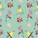 Creative and colorful nature birds and flowers seamless pattern vector. Beautiful and colorful nature birds seamless pattern vector for prints on paper, fabric Stock Photography