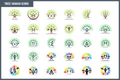 Creative Colorful Tree Human Concept Icon Set. Business community icons. Vector design elements. Creative Stock Illustration vector illustration