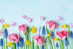 Creative composition of beautiful spring flowers on pastel table top view. Greeting card for International Women Day. Flat lay stock photo