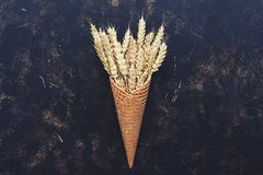 Creative composition wheat or rye grain on waffle cone on a dark rustic background. The concept of autumn, harvest. Creative composition wheat or rye grain on stock photography