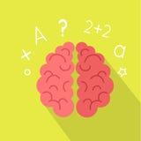 Creative Concept of the Human Brain Stock Photos