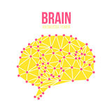Creative concept of the human brain, vector Stock Photography