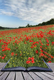 Creative concept pages of book Stunning poppy field landscape un stock images