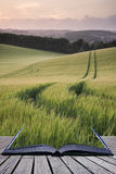 Creative concept pages of book Summer landscape image of wheat f Stock Image