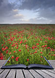 Creative concept of poppy field coming out of page Stock Images