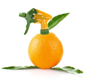 Creative conception of orange Stock Photography