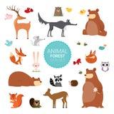 Creative Cute Wild Forest Animals vector illustrations. Big set of Vector illustrations of really cute cartoon Wild Forest Animals Stock Photography
