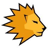 Face lion Stock Photo