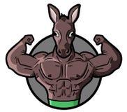 Gym horse Royalty Free Stock Image