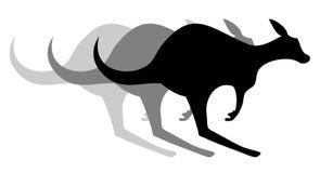 Kangaroo effect Royalty Free Stock Image