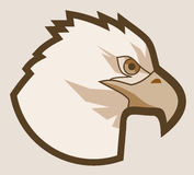 Old eagle Stock Photography