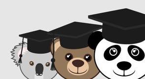 Student bears