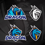 Creative dragon logo concept. Sport mascot design. College league insignia, Asian beast sign, Dragons illustration. School football team vector on dark Royalty Free Stock Photo
