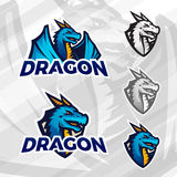 Creative dragon logo template. Sport mascot design. College league insignia, Asian beast sign, Dragons illustration. Football poster Stock Photo