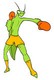 Mantis fighter. Creative draw of muay thai insect fighter Royalty Free Stock Photography