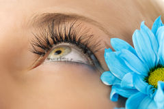 Creative eyelashes Stock Photography