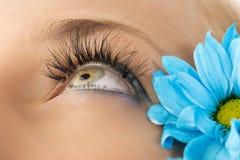Creative eyelashes Stock Photography