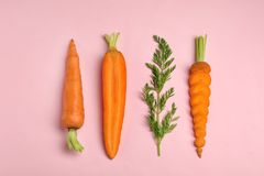 Creative flat lay composition with fresh ripe carrots stock photo