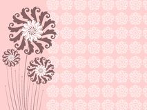Creative floral design background Royalty Free Stock Photo