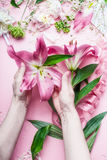 Creative Florist workspace. Female hands holding beautiful big pink lily flowers on pastell table with florist decoration equipmen. T, top view, frame.Festive stock images