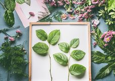 Creative florist workspace with flowers , greeting card mock up and beautiful green leaves for arrangement Stock Photos