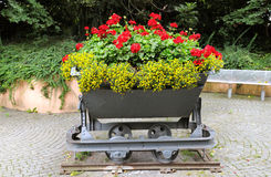 Creative flower bed Stock Photo