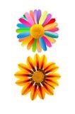 Creative Flowers Royalty Free Stock Photo