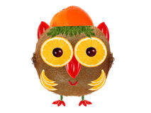 Creative food concept. Little  Owl made from kiwi and orange Stock Image