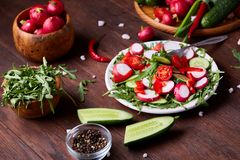 Creative fresh vegetable salad with ruccola, cucumber, tomatoes and raddish on white plate, selective focus. Creative fresh vegetable salad with ruccola Royalty Free Stock Photography