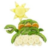 Creative fruit child dessert turtle form Stock Photos
