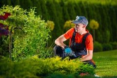 Creative Garden Designer Royalty Free Stock Photography