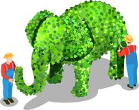 Creative Gardening Isometric Composition. Gardener isometric composition of uniformed human characters tipping elephant shaped bush with shadows on blank Stock Image