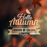 Creative graphic message for your autumn design Stock Photo