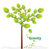 Creative gravity. Illustration explained isolated on white Royalty Free Stock Images