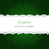 Creative green background Stock Photography