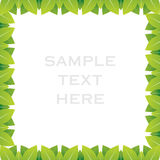 Creative green leaf frame design background Royalty Free Stock Image