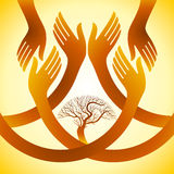 Creative group of hands with save tree,illustration. Creative group of hands with save tree Stock Image