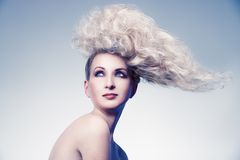 Creative hairstyle. Beauty portrait of young blonde with creative hairstyle, studio shot royalty free stock photography