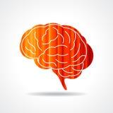 Creative Human brain  Royalty Free Stock Photography