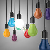 Creative idea and leadership concept  colors light bulb Royalty Free Stock Photography