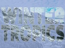 Creative idea of winter aerial mountain logo text concept f. Creative idea of winter aerial mountain logo text concept royalty free stock photos