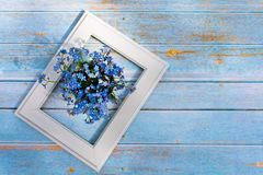 Blue flowers and white frame on a light wooden background. Spring minimal concept. Nature background royalty free stock images